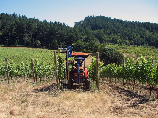 All Crawford Beck Vineyard tractors are run on biodiesel fuel.